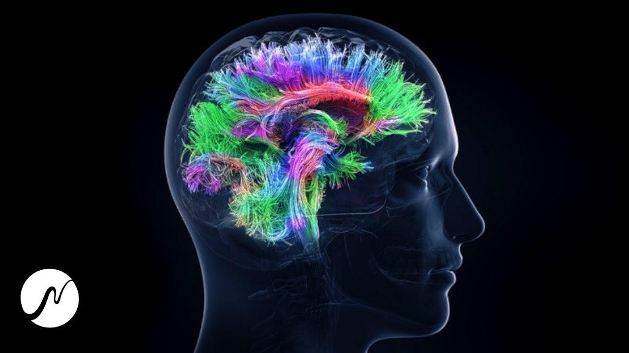 Activar el potencial cerebral al 100% – frecuencia genio – ondas beta (ondas cerebrales)