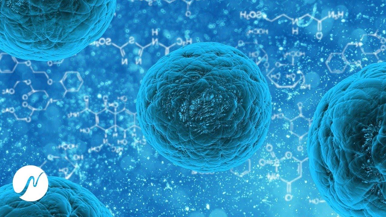 Frecuencia antivirus: refuerzo inmunitario: infecciones limpias, virus, bacterias, hongos