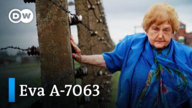 Una infancia en el infierno de Auschwitz | DW Documental