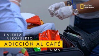 Esta pasajera tiene una adicción muy fuerte al café   Alerta Aeropuerto Lima