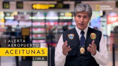 Un cargamento de aceitunas muy sospechoso   Estreno: Alerta Aeropuerto Lima