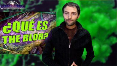 Blob, el extraño organismo que ha sorprendido al mundo