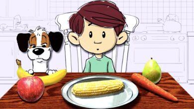 La sencilla historia de la fotosíntesis y la comida – Amanda Ooten