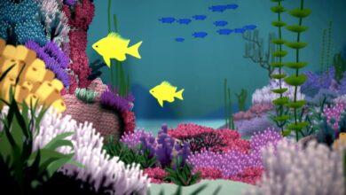La conservación de nuestros espectaculares arrecifes de coral, vulnerables – Joshua Drew