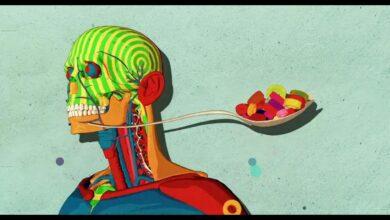 Cómo el azúcar afecta el cerebro – Nicole Avena